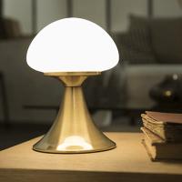 Come scegliere la lampada per tavolo, comodino e scrivania   Leroy ...