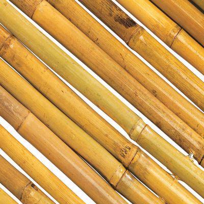 Tapparella bamboo usato tenda a rullo di bamb tapparella for Arelle leroy merlin