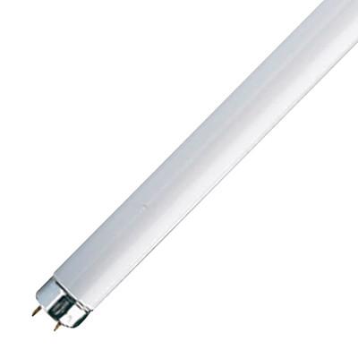 Tubo fluorescente t8 18w luce fredda prezzi e offerte online for Tubos led t8 leroy merlin