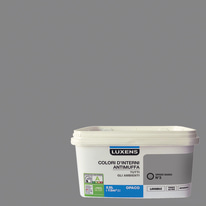 Idropittura lavabile Antimuffa Grigio Sasso 3 - 2,5 L Luxens