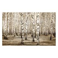 Quadro in legno Betulle 60x90