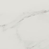 Piastrella Venezia Calacatta 45 x 45 cm