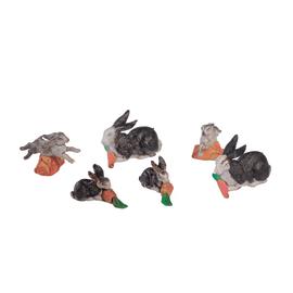 Conigli soggetti assortiti