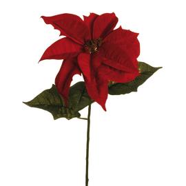 Fiore Stella di Natale in velluto, H 67 cm