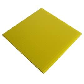 Plexiglass vetro sintetico e accessori prezzi online for Lastre vetro sintetico