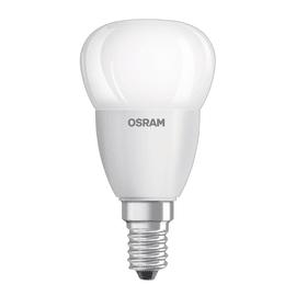 3 lampadine LED Osram E14 =40W sfera luce naturale 300°