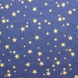 Cielo stellato 100 x 70 cm