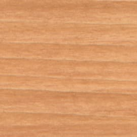 Stucco per legno Syntilor faggio 50 g