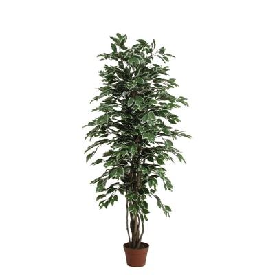 Pianta artificiale Ficus in vaso H 150 cm. Prezzo online ...