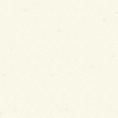 Pittura ad effetto decorativo Glitter Bianco Avorio 1 2 L