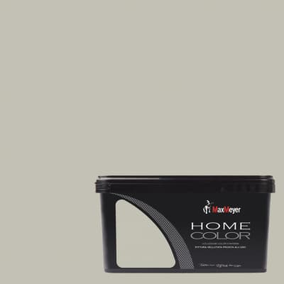 Pittura murale HOME COLOR MAX MEYER 2.5 L silver
