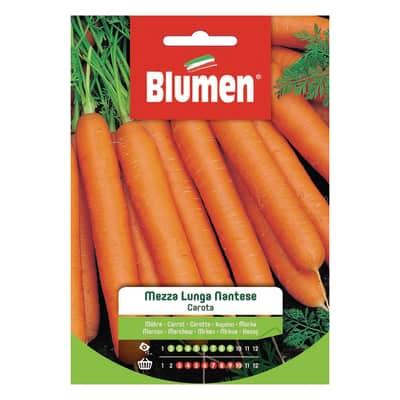 Seme per orto carota mezza lunga nantese