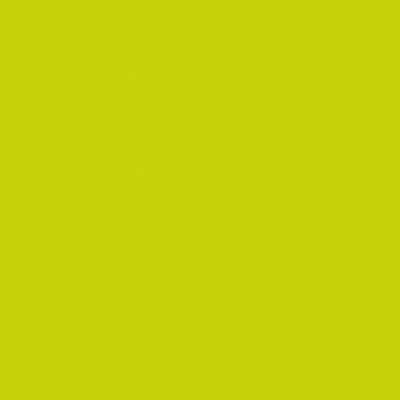 Pellicola Plastica adesiva verde 0.45x2 m