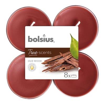 Tealight BOLSIUS essenza oud wood  Ø 11.5 cm H 4.6 cm, 8 pezzi
