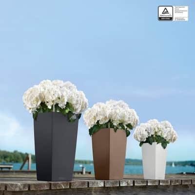 Vaso Cubico Color LECHUZA in polipropilene beige H 30 , L 30 X P 56 cm  Ø 20 cm