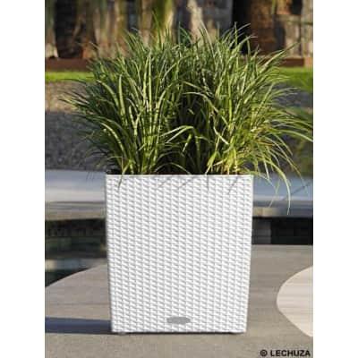 Vaso Cubico Cottage LECHUZA in plastica bianco H 40 , L 40 X P 40 cm  Ø 20 cm