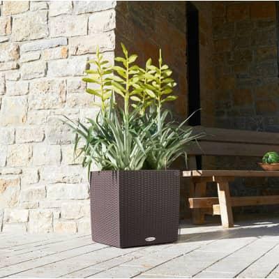 Vaso Cubico Cottage LECHUZA in plastica colore Marrone H 40 cm, L 40 x P 40 cm