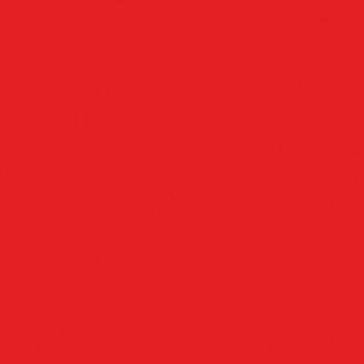 Colorante iperconcentrato ad acqua Bravo rosso vivo 80 ml