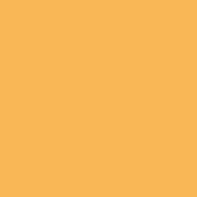 Idropittura traspirante india gold 2,5 L Fleur